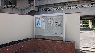 DSCF8741.jpg