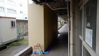 DSCN6770.jpg