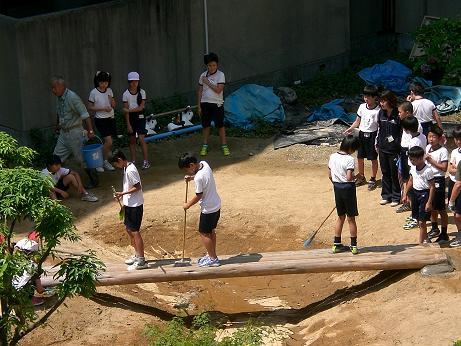 ビオトープ 6年 橋2.JPG
