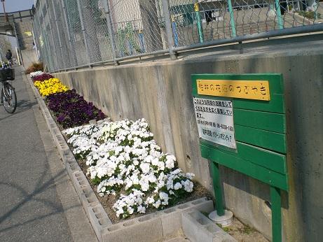 花壇3.jpg