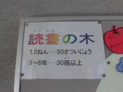 CIMG5184.JPG