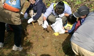 福祉芋掘り1.jpg