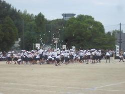 1年団体競技2.JPG