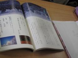 IMG_9409.jpg