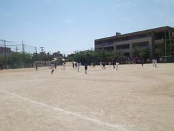 DSCF4213.jpg