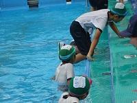 5着衣泳2.jpg