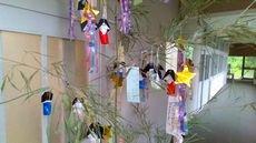 tanabata_1.jpg