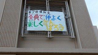 DSCN7984.jpg
