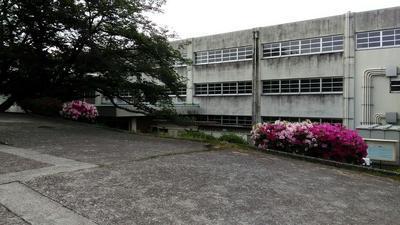 学校.jpg