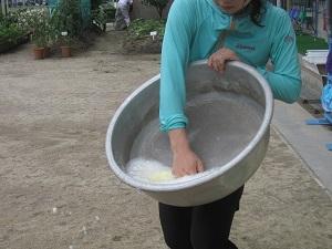 1石鹸.jpg